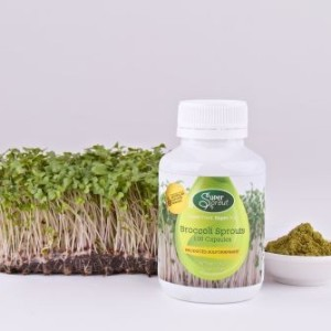 Broccoli Sprout Supplement - 100 Capsules