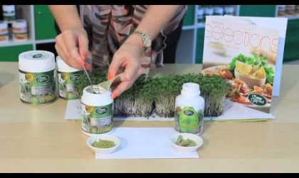 Broccoli Sprouts produce Sulforaphane